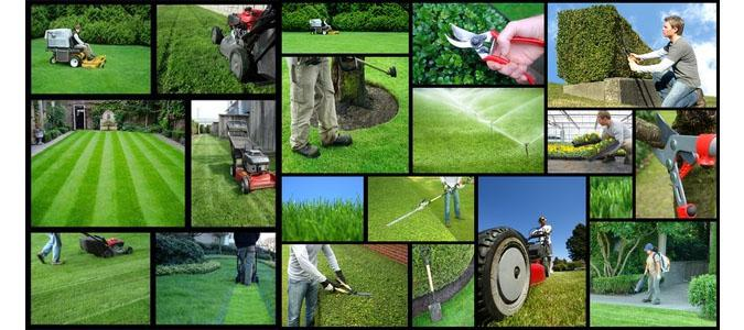 How To Start A Lawn Mowing Business Financeviewer