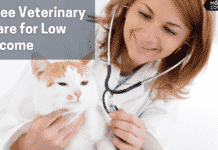 free veterinary care for low income